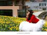전남 구례여행/치즈랜드 언덕위에 내려앉은 노란별 수선화 【20년3월31일】