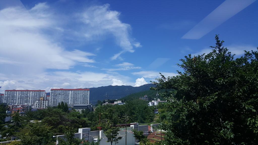 햇살 좋은 오후 고추말리기