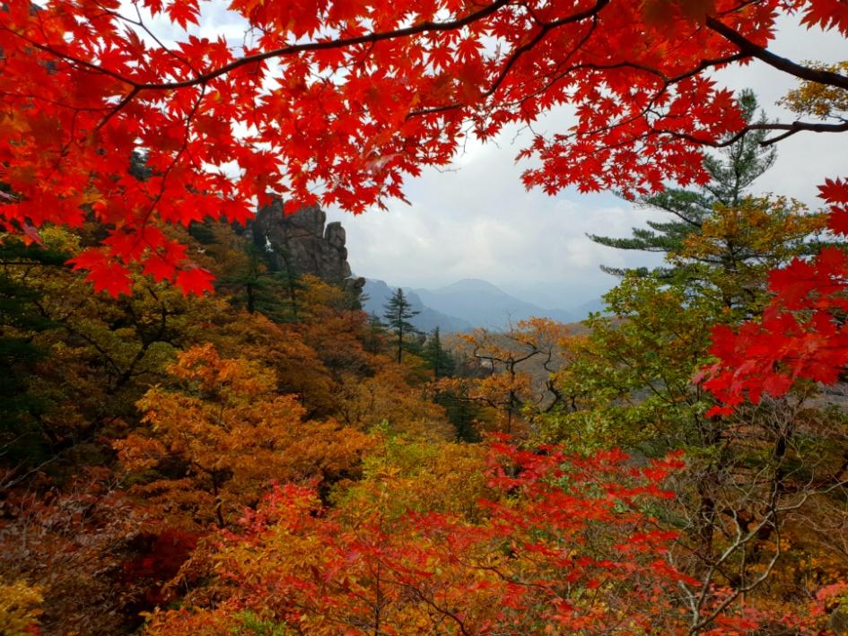 가을 설악산 서북능선을 걷다(한계령~대청봉~오색)